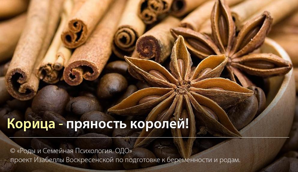 """""""Корица - пряность королей"""" - Автор Изабелла Воскресенская"""