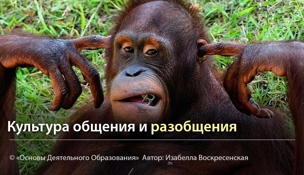 """""""Культура общения и разобщения"""" - Автор Изабелла Воскресенская"""